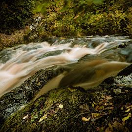 by Nikolai Zemljannikov - Landscapes Waterscapes ( fall, color, colorful, nature )
