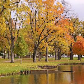 City Park Color by Jim Czech - City,  Street & Park  City Parks ( wisconsin, park, fall colors, autumn leaves, autumn, creek, fall, trees, autumn colors, pond )