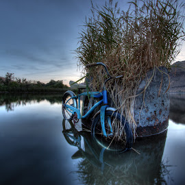 Tuff of Grass by Eric Demattos - Transportation Bicycles ( grass, sunset, blue bike, evening, antique, abandoned, river )
