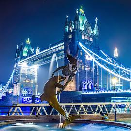 Tower Bridge London by Jon Raffoul - Buildings & Architecture Statues & Monuments ( london, night photography, tower bridge, light trails, photography,  )