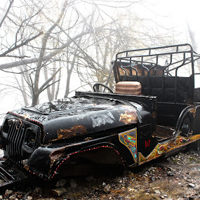 The Jeep  by Fawad Hashmi - Artistic Objects Other Objects ( jeep, auto,  )