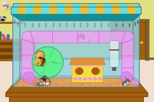 Screenshot of Hamster Chase
