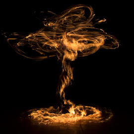 Tree of Fire by Chad Perry - Abstract Light Painting ( poi, light painting, spinning, tree, performer, talented, flow, fire )
