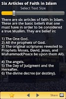 Screenshot of Islam - 30 Facts