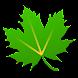 Greenify image