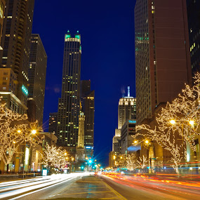 by Brian Arnold - City,  Street & Park  Night ( skyline, illinois, michigan avenue, night, chicago )