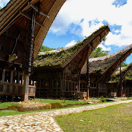 Tongkonan, the Toraja Traditional home by Hartono Wijaya  - Buildings & Architecture Homes ( home, architecture )