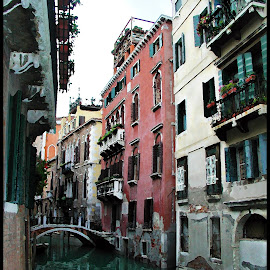 streets of venice by Leslie Hunziker - Buildings & Architecture Public & Historical ( water, canals, venice, architecture, bridges )