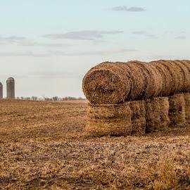 Hay by Berl Thomas - Landscapes Prairies, Meadows & Fields ( south dakota )