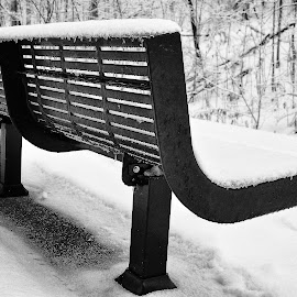 Waiting for Spring by Christine May - Artistic Objects Other Objects ( winter, bench, seat, white, photo, photography,  )