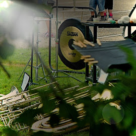 A Moms View of Band Camp 2014 by Diana Fay - Artistic Objects Musical Instruments