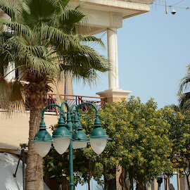 Shop,Lamps,Trees by Naveen Aggarwal  - City,  Street & Park  Markets & Shops