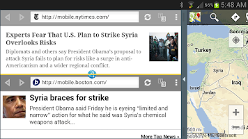 Screenshot of Split Browser Trial