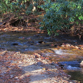 Beautiful Stream with Rocks by Terry Linton - Nature Up Close Water ( path, nature, landscape )