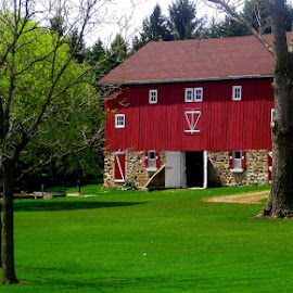 Happy Place Barn by Amy Clark - Buildings & Architecture Other Exteriors ( new, red, barn, grass, green )