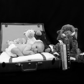 Precious gift from above by Jessica Williams Bender - Babies & Children Babies ( newborn photography, newborn in suitcase, newborn posed,  )
