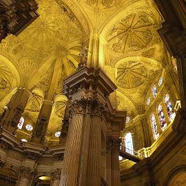 Malaga - La cattedrale by ANNA RIBOTTA - Buildings & Architecture Architectural Detail ( Architecture, Ceilings, Ceiling, Buildings, Building )