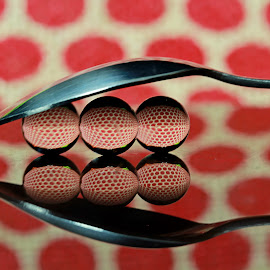 by Dipali S - Artistic Objects Cups, Plates & Utensils ( reflection, polka dots, artistic, cutlery, spoon, refraction )