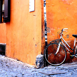 Bicycle in Rome by Rob Taylor - Transportation Bicycles ( bicycle old street corner cobble,  )