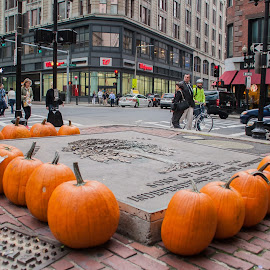 Pumpkins at a market. by Daniel Gorman - City,  Street & Park  Markets & Shops ( shop, orange, pumpkin, pumpkins, street, vegetables, massachusetts, halloween, city, urban, downtown crossing, market, boston, cities, food, vegetable )