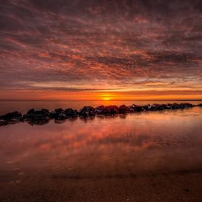 Tranquility by Dan Girard - Landscapes Beaches ( water, sand, dan_girard_photography, nature, 2015, dan girard photography, colonial beach, sunrise, beach, sun )