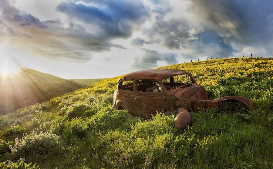 Columbia Gorge April 2014 by Lee Gochenour - Landscapes Prairies, Meadows & Fields ( oregon, columbia gorge, landscape )