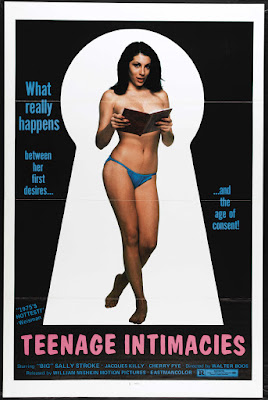 Keyhole Report (Schlüsselloch-­Report, aka Teenage Intimacies) (1973, Germany) movie poster