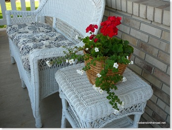 geraniums in September