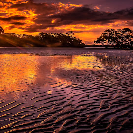 Ripples by Alex Stecina - Landscapes Sunsets & Sunrises ( clouds, water, sand, reflection, sky, sunset, trees, ocean, coastal, dusk, rays, sun, colours )
