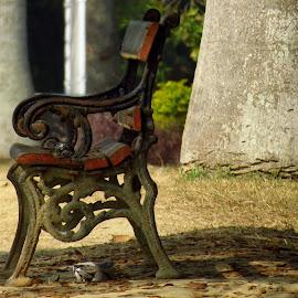 by Raj Sarkar - Artistic Objects Furniture