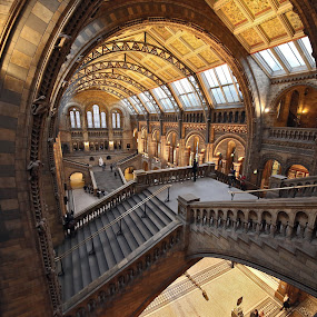 wide at NHM by Almas Bavcic - Buildings & Architecture Other Interior