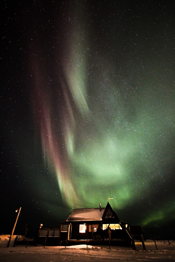 Aurora borealis in Iceland by Hafsteinn Kröyer Eiðsson - Landscapes Starscapes ( bright, house, eos, sky, night photography, sky view, snow, reykjanes, dark, garður, skyscape, milkyway, moving, starscapes, windows, country side, roof, december, fence, iceland, winter, stars, fast, night shot, nightscapes, christmas lights, aurora borealis, ocean, barb wire, landscape, space, sandgerði, canon eos, lights, canon eos 650d, purple, green, aurora, christmas, star, night time, 10mm, poles, keflavík, shed, red, night view, wide angle, many stars, night, samyang 10mm,  )