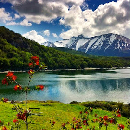 Tierra Del Fuego National Park by Tyrell Heaton - Instagram & Mobile iPhone ( iphone4, tierra del fuego national park )