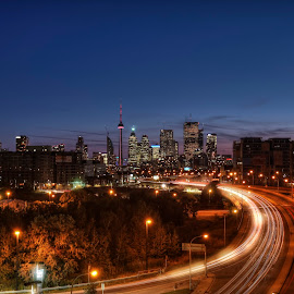 DownTown Toronto by Dbart ... - City,  Street & Park  Skylines