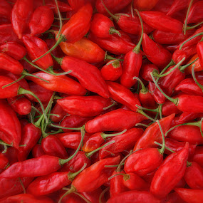 Red Chillies by Alex Graeme - Food & Drink Fruits & Vegetables ( chillies, south devon chilli farm )