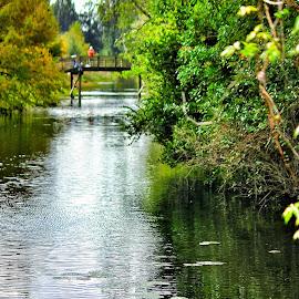 Precious Moment With Nature! by Florent Alezi - City,  Street & Park  Amusement Parks