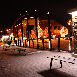 Crisp Christmas Night by Laura Gardner - Novices Only Street & Candid ( lights, winter, idaho falls, nd, snake river, frost, park bench, night, city )