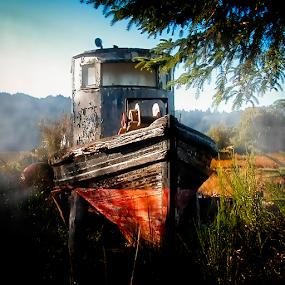 Old Boat in Field at Sunrise by Joseph Vittek - Transportation Boats ( old, ocean, sunrise, fishing, boat, small, peeling, abandoned, mist,  )