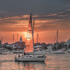 Sailing along the river. by Jeb Buchman - Landscapes Waterscapes ( water, annapolis, stream, waterscape, creek, lanscape, maryland, sail, sailboat, boat, river )