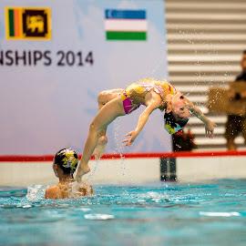 Flip by Daniel Chua - Sports & Fitness Watersports ( aquatic, pool, championship, swimming, flip, emotion )
