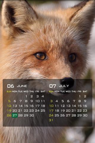 EcoLoco Calendar