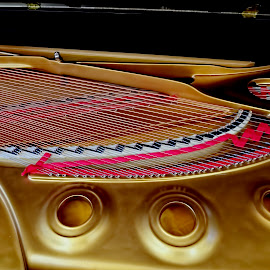 Baby Grand by Pictures that Pop - Artistic Objects Musical Instruments