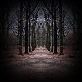 by Ad Spruijt - Digital Art Places