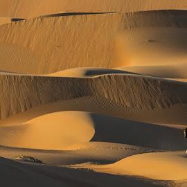 Picnic between Golden Hills by Adeeb Alani - Nature Up Close Sand ( #nikon )