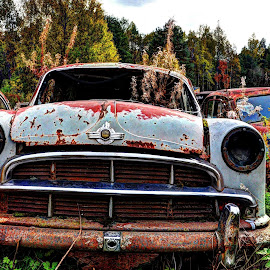 Have seen better days! by Jan Myhrehagen - Transportation Automobiles ( old car, wreck, cars )
