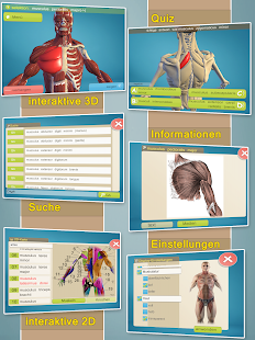 Easy Anatomy 3D(learn anatomy) Screenshot