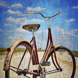 Rusted Away by Kaitlyn Lawrence - Transportation Bicycles ( bike rustic old vintage country landscape summer scenery beauty )