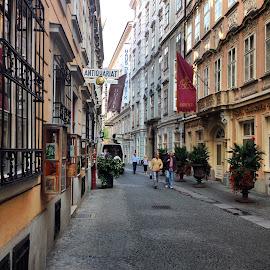Street by Kseniya Maksimenko - City,  Street & Park  Street Scenes ( street )