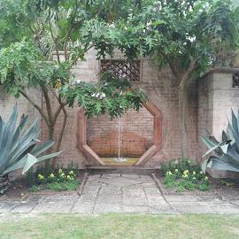 water garden by Wilson Quinones - Buildings & Architecture Public & Historical