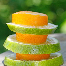 Citrus composition by Mia Ikonen - Food & Drink Fruits & Vegetables ( slices, kumquat, composition, finland, lime,  )